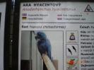 Klassenfahrt 3BHK 2009-2010 Nachod - Prag_31